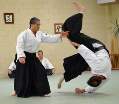 Best of Sensei 2012_15