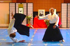 Best of Sensei, 2015