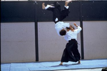 Best of Sensei 1980s_8