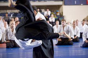 2008 - Guest Instructor, Doshu Seminar