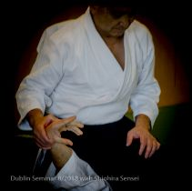 Trivalley Aikido : 2018_3
